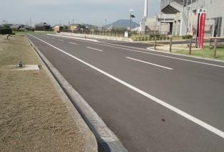 市道運動公園北線道路測量設計業務