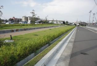 東汐入川緑道公園測量設計業務